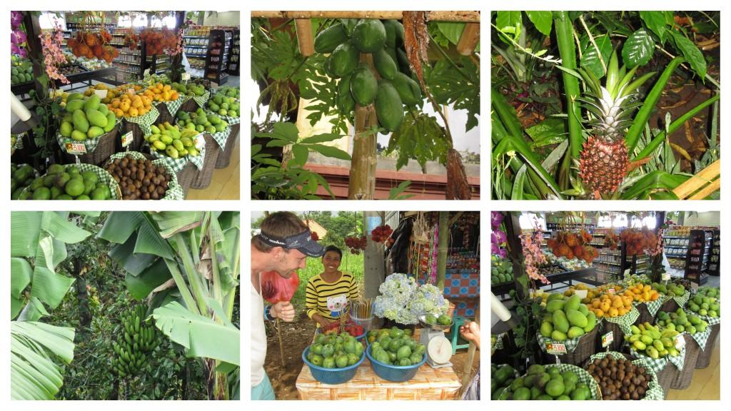 Bali-ein-wahres-Früchteparadies
