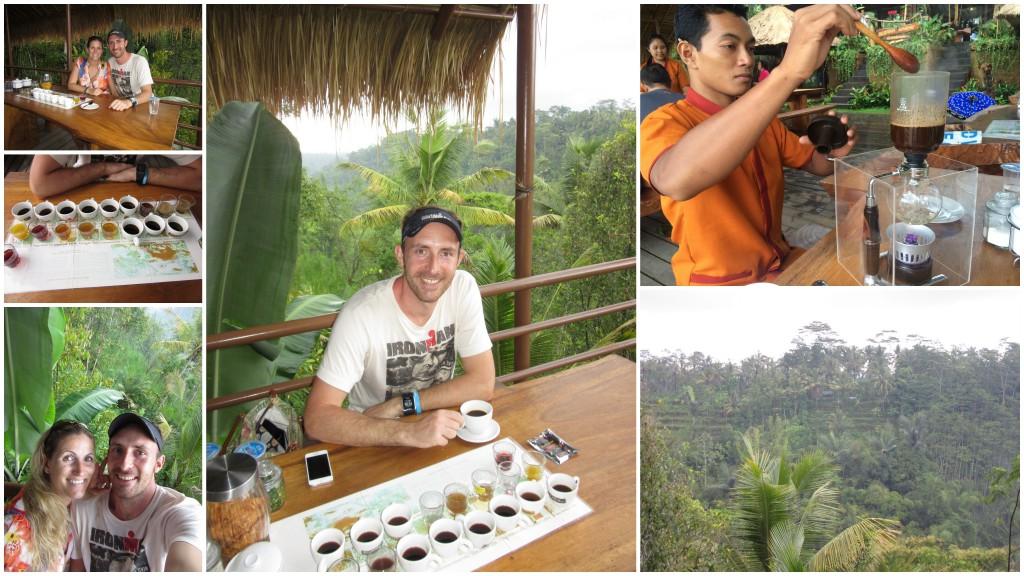 2-Luwak-Kaffee-Bali