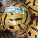 Ball-Sepak-Takraw